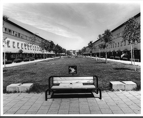 Woningbouw Willem Dreesplantsoen / Housing Willem Dreesplantsoen ( Duinker Van der Torre )