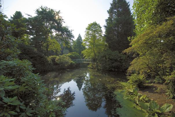 Arboretum Trompenburg / Arboretum Trompenburg ( H. Wachter Pzn. )